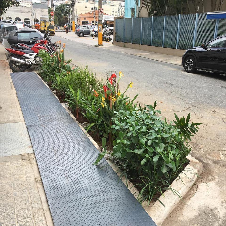 São Paulo é PANC (Plantas Alimentícias não Convencionais)