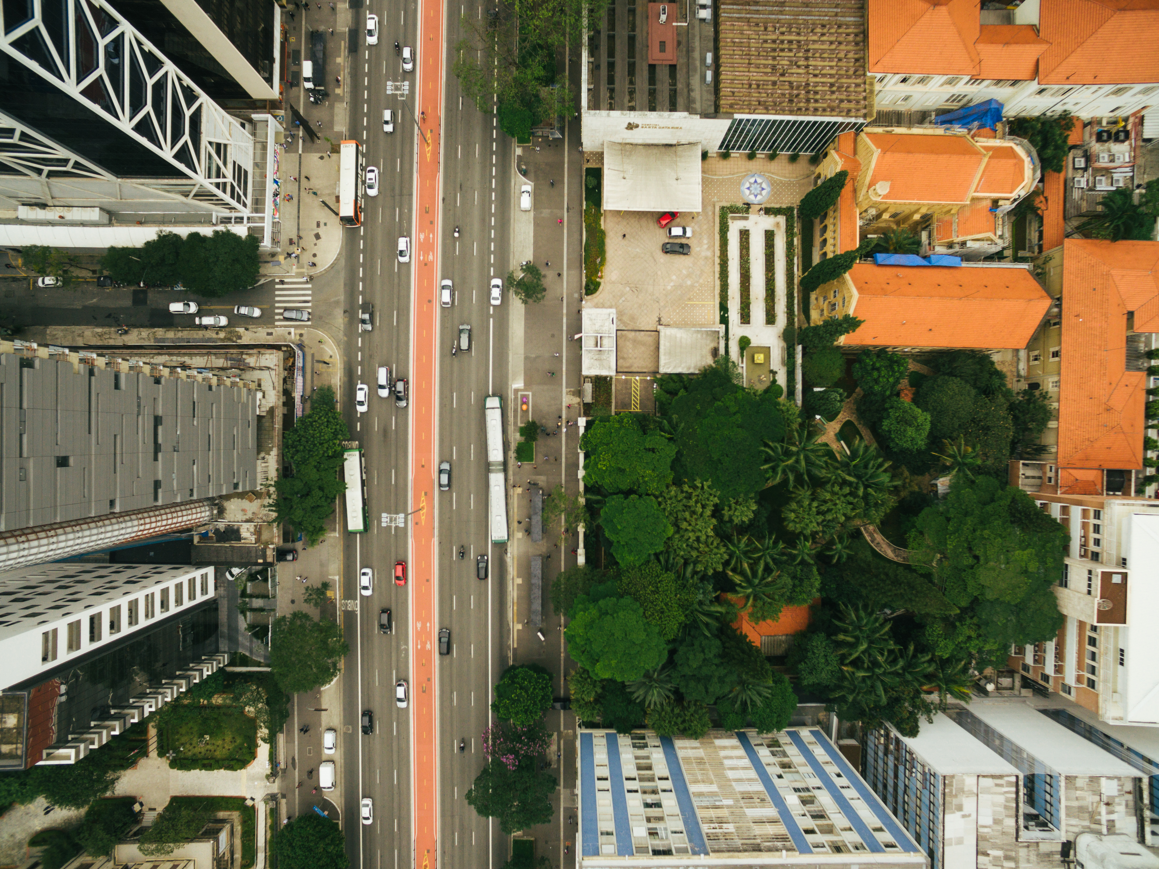 Fotógrafa Paula Lopes se reconectou com São Paulo por causa da Agricultura Urbana